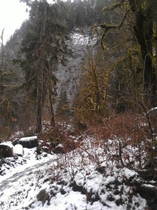 Middle Fork Sno River